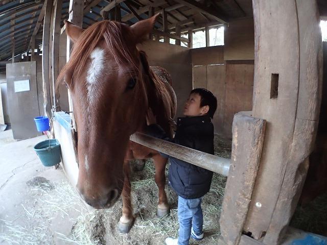 4月26日(火)馬から学ぶ、「馬学び(UMANAVI)」クラススタートします。