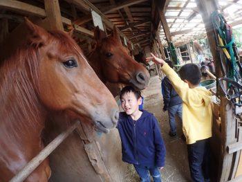 第2回 開催 馬から学ぶ、「馬学び(UMANAVI)」クラス 5月24日(火)