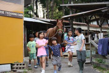 第3回 開催 馬から学ぶ、「馬学び(UMANAVI)」クラス 6月21日(火)今回は保護者の見学もOKです。