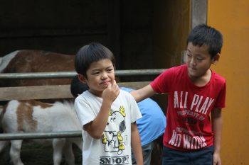 子ども同士は自然とお互いの生きる力を高めあう。 余計な想念を払い落とし、自由であれば。