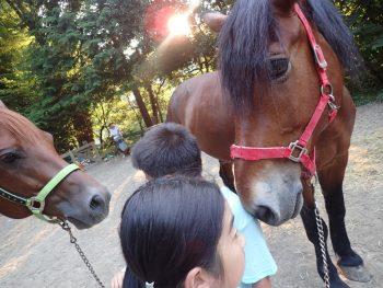 7月19日(火)馬ナビ!! 涙出るかと思ったよ…ほんとに