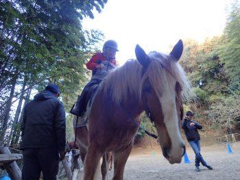TIDE POOL&馬学び  子どもたちは馬から何を学びどのように育っていくのか