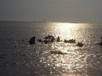 7月7日 葉山海開き! 子供たちと自然は波長がとても良いですよ。心からそう感じました。