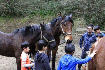 2018年度 第3回馬学び(UMANAVI)のご案内 「愛情」「勇気」「自立」の心を持ち「生きる力」を自ら育む