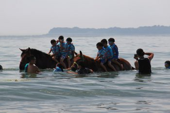 馬学び1泊2日の特別プログラム開催!